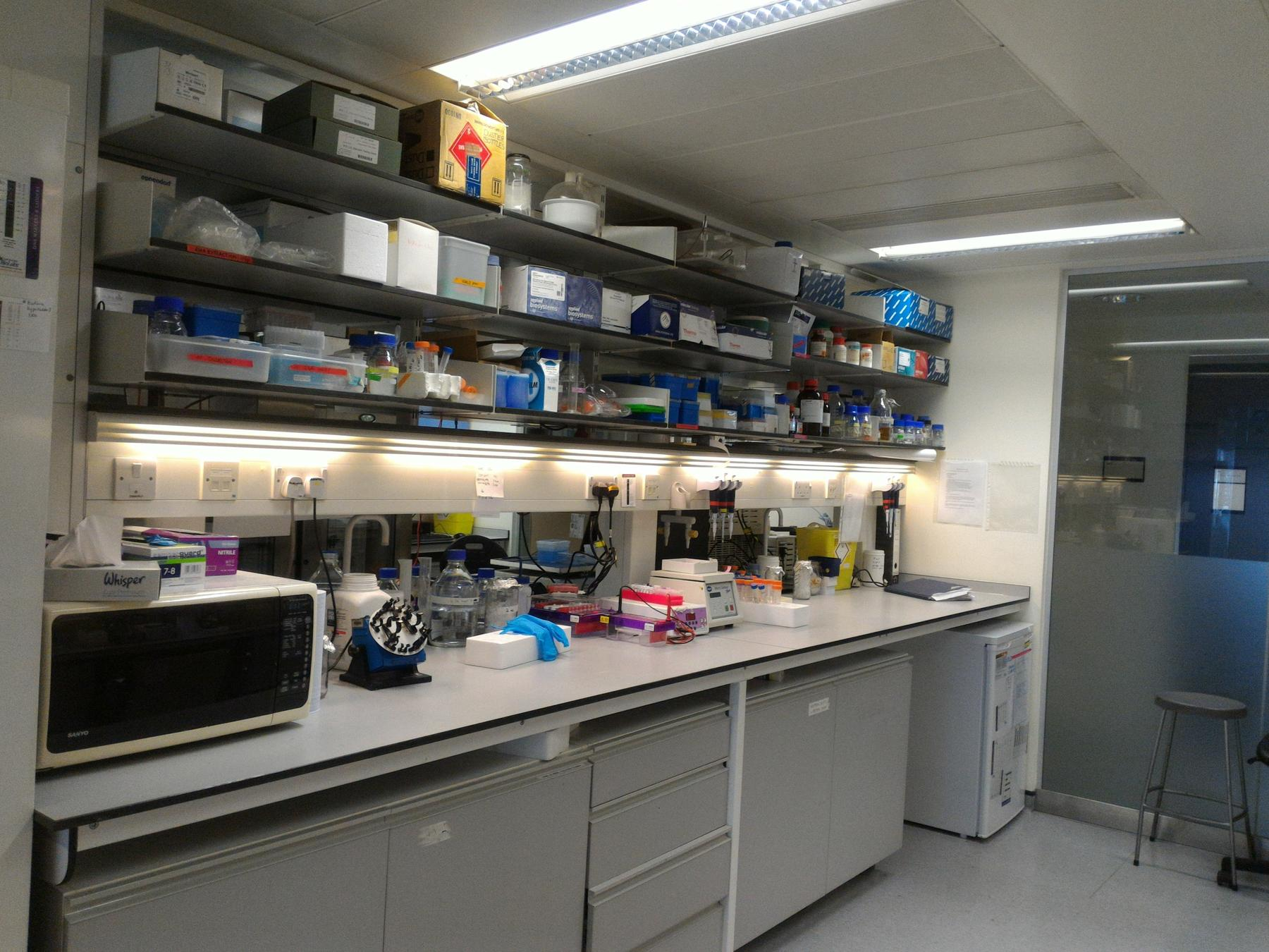 A corner of the wetlab