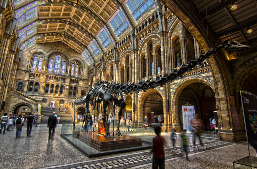 The Natural History Museum, a cathedral of Science, is next door.